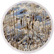 Ice Coated Bullrushes Round Beach Towel