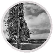 Ice Coated Tree Round Beach Towel
