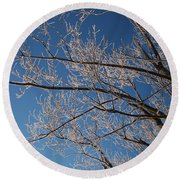 Ice Storm Branches Round Beach Towel