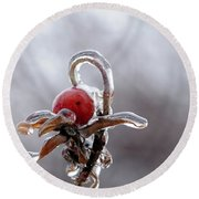 Iced Rose Hips Round Beach Towel