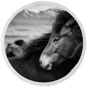 Icelandic Horses Round Beach Towel by Dave Bowman