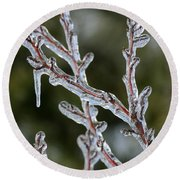 Icy Branch-7485 Round Beach Towel