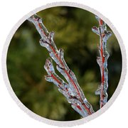 Icy Branch-7520 Round Beach Towel