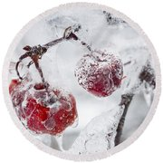 Icy Branch With Crab Apples Round Beach Towel