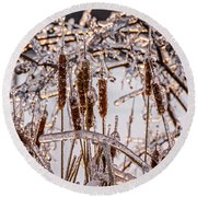 Icy Cattails Round Beach Towel