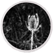 Icy Thistle In Monochrome Round Beach Towel