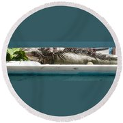 Iggy Round Beach Towel