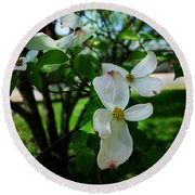 Illinois Capitol Dogwood Round Beach Towel