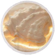 Illumination Series Sea Shells 16 Round Beach Towel