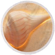 Illumination Series Sea Shells 19 Round Beach Towel
