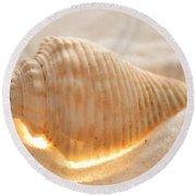 Illumination Series Sea Shells 8 Round Beach Towel
