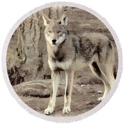 Illusion Of A Wolf Round Beach Towel