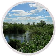 Images Of The Pantanal Round Beach Towel
