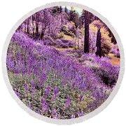 Img 4892_ Purple Lupine_ Yosemite National Park  Round Beach Towel