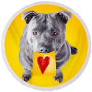 Imploring Staffie With A Sticky Note On His Mouth Round Beach Towel