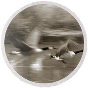 In A Blur Of Feathers Round Beach Towel