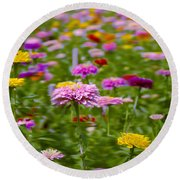 In A Field Of Flowers Round Beach Towel