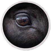 In A Horse's Eye Round Beach Towel