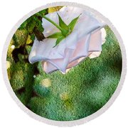 In Early Morning Light - White Rose Round Beach Towel