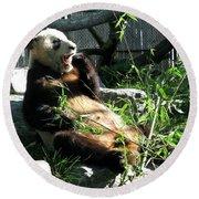 In Need Of More Sleep. Er Shun Giant Panda Series. Toronto Zoo Round Beach Towel