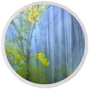 In The Blue Forest Round Beach Towel