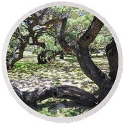 In The Depth Of Enchanting Forest V Round Beach Towel