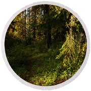 In The Druid Cathedral Round Beach Towel