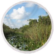 In The Everglades Round Beach Towel