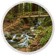 In The Forest - Limekiln State Park In California Round Beach Towel