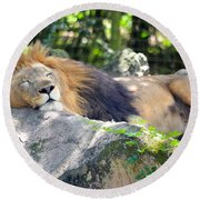 In The Jungle The Mighty Jungle Round Beach Towel