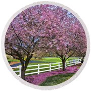 In The Pink Round Beach Towel by Debra and Dave Vanderlaan