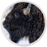 In The Presence Of  Bison - 6 Round Beach Towel