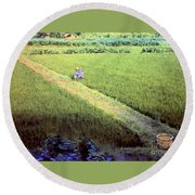 In The Rice Fields Round Beach Towel