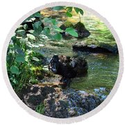 In The Shadows Of The Creek Round Beach Towel