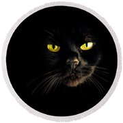 In The Shadows One Black Cat Round Beach Towel