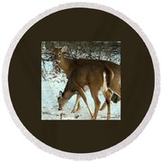 In The Snow At Sunset Round Beach Towel