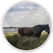 In The Tall Grass Round Beach Towel