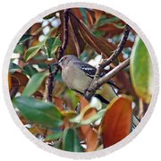 In The Tree Round Beach Towel
