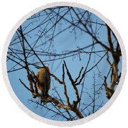 In The Trees Round Beach Towel