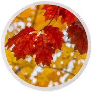 Indian Summer Trees Round Beach Towel