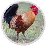 Infamous Kauai Chicken Round Beach Towel