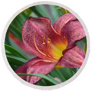 Inflamed - Lily Round Beach Towel