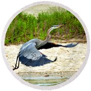Inflight Great Blue Heron Round Beach Towel