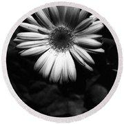 Infrared - Flower 05 Round Beach Towel