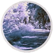 Infrared Morning Round Beach Towel