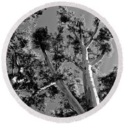 Infrared Tree Round Beach Towel