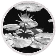 Infrared - Water Lily 02 Round Beach Towel