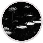 Infrared - Water Lily And Lily Pads Round Beach Towel
