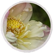 Inner Beauty Of The Lotus Round Beach Towel
