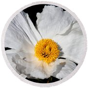 Innocent Krinkle - White Peony By Diana Sainz Round Beach Towel